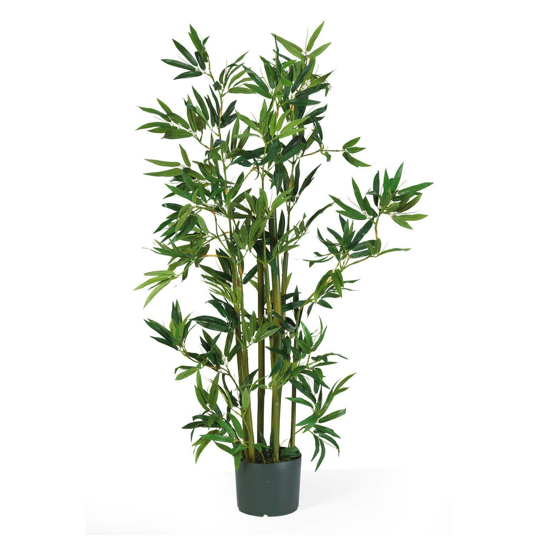 4 Bamboo Silk Plant