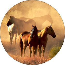 Horse 9 Spare Tire Cover Fits Jeep Rv Camper Trailer Centered