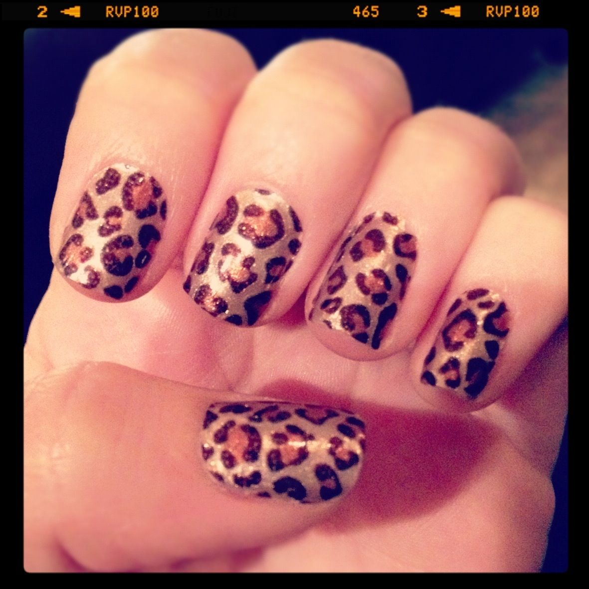 Leopard love hair to toes pinterest leopards leopard