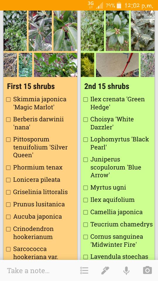 How to Learn Botanical Latin Names Planting shrubs