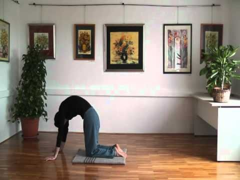 Domagoj Orlic Yoga Of Heart Proper Sequencing For Headstand And Shoulderstand Part 1 Youtube Free Yoga Yoga Yoga Pilates
