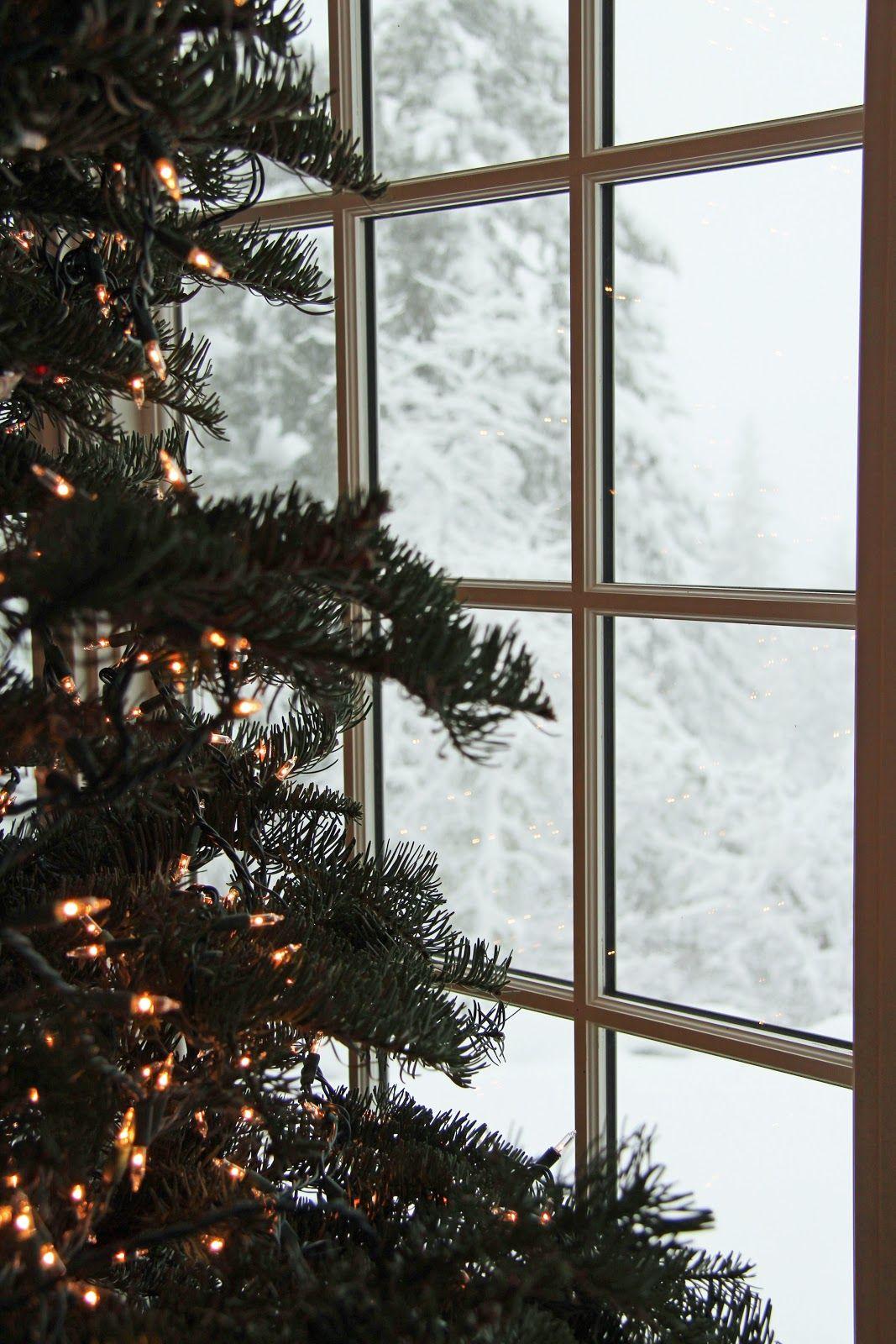 Weihnachtsbaum mit klassischer Lichterkette in der Weihnachtszeit.