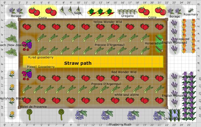 Garden Plan - 2013: raised asparagus bed | Garden planting ...