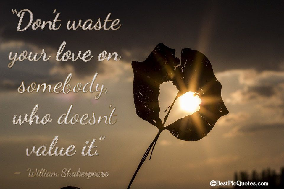Don T Waste Your Love On Somebody Who Doesn T Value It William Shakespeare Picture Quote Quotes Shakespeare Quotes Love William Shakespeare