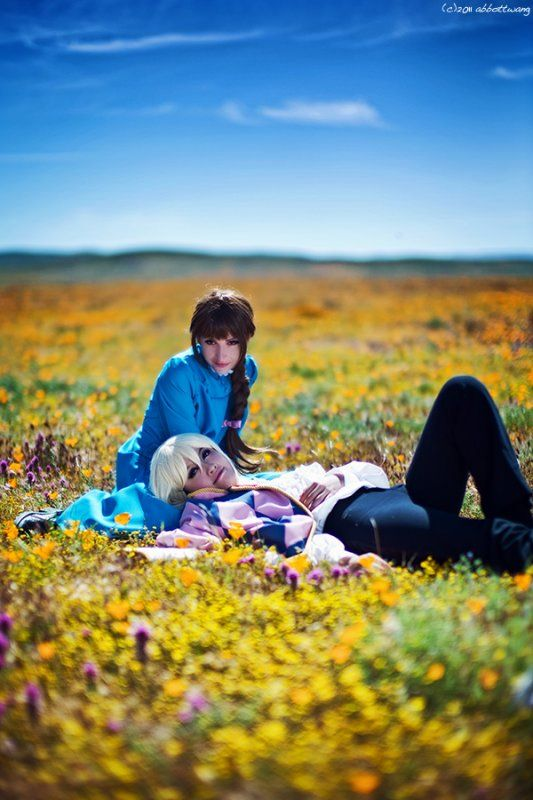Howl and Sophie by ~Shiya on deviantART