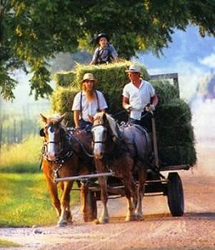 20 top things to do in indiana amish country ohio and for Amish country things to do