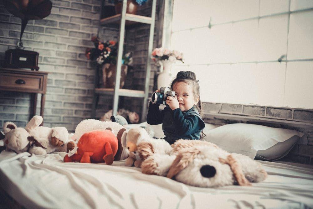 How To Find Bed Bugs During The Day Bedbugs Bedbugseradicator Getridbedbugs Training Your Dog Dog Training Dogs