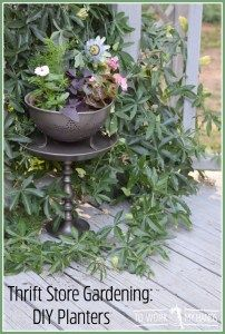 Thrift Store Repurpose Lamp to Garden Planter is part of garden Planters Repurposed - Don't overlook a thrift store repurpose for your yard or garden  With a few easy shopping skills and habits, you can make your own decor that looks highend for a fraction of the cost of premade and overpriced pieces