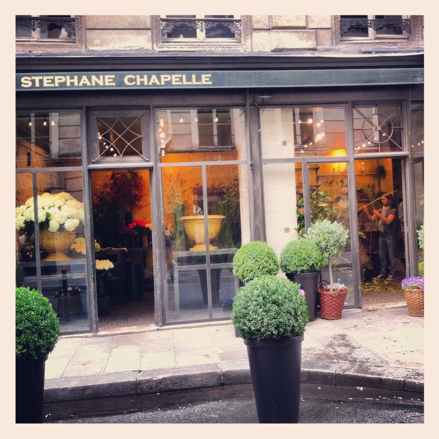 Flowershop In Paris Stephane Chapelle 29 Rue De Richelieu