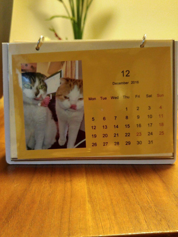 ラム&モナちゃんのカレンダー完成 http://bit.ly/1OVueyQ by @MonakoOosama930