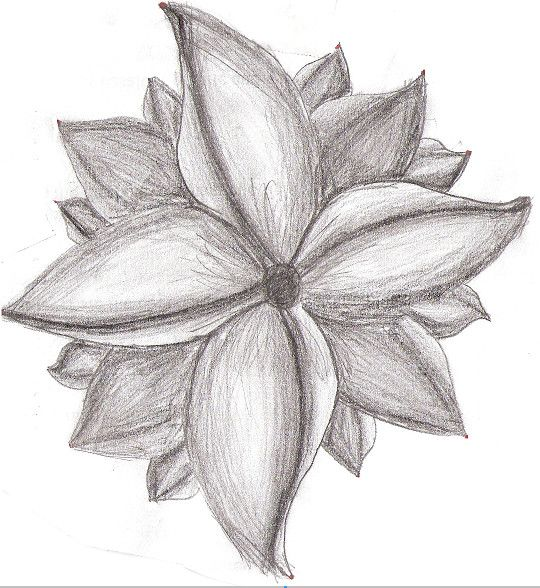 Flower pencil art