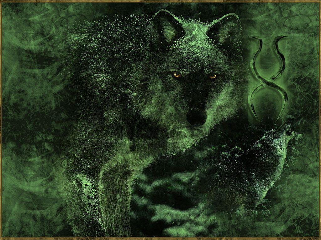 Wolf Requiem by potion.deviantart.com on @DeviantArt