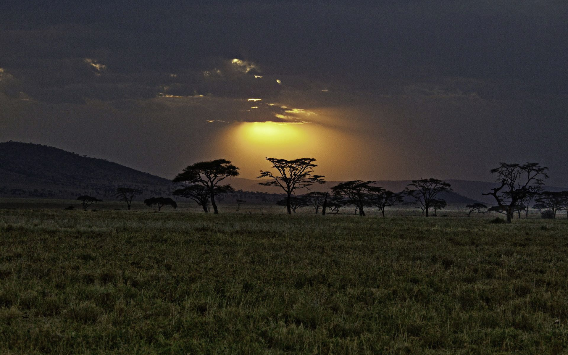 Одно из самых красивых мест на Земле - кенийская саванна ...
