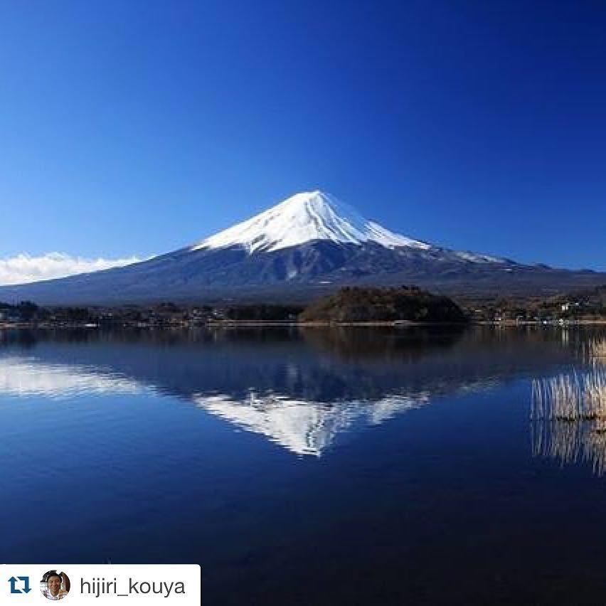 #Repost @hijiri_kouya  おはようございます_ ワクワクと素敵な新年日目の一日をお過ごしください