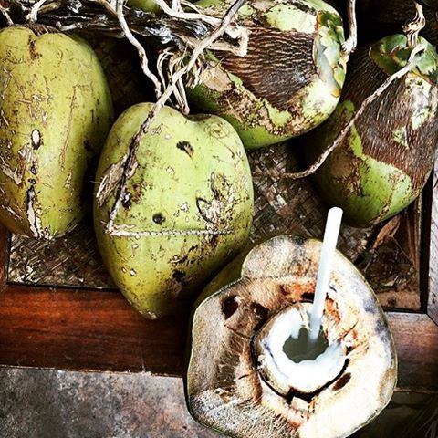 Refreshing coconut water on St. John. Visit Caneelbay.com for learn more about Caneel Bay Resort