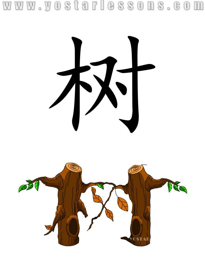 Tree Imagine Two Trees Growing Together Detailed Chinese