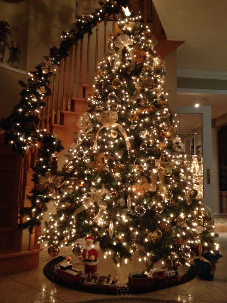 Christmas Tree In The Entry Christmas Lights Christmas Tree Inspiration Christmas Tree Decorations