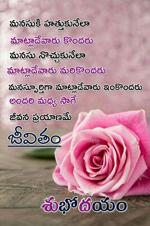 Pin by Surya on gm quote Floral rings, Telugu