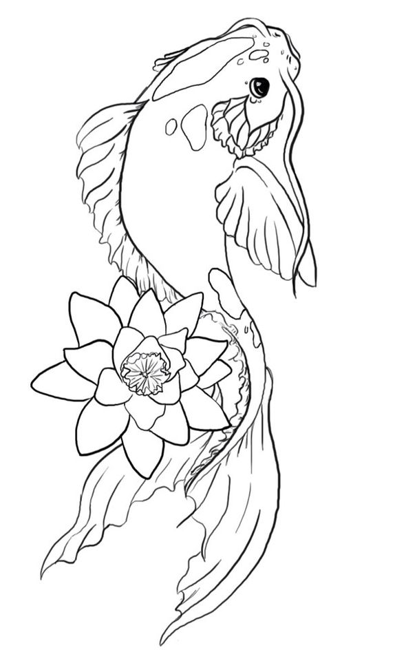 Koi fish drawing outline - photo#35