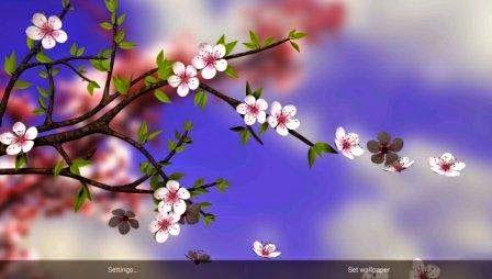 Lima Wallpaper 3d Parallax Dengan Efek Animasi Yang Mengagumkan Flower Images Spring Flowers Flowers