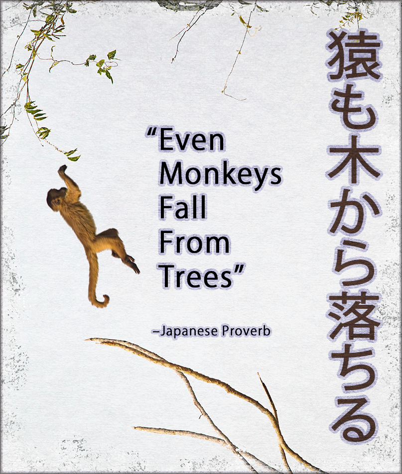 "Quotes ""Even monkeys fall..."" Japanese Proverb. follow ..."