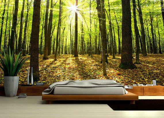 Forest MURAL Wallapeper nature nature mural by
