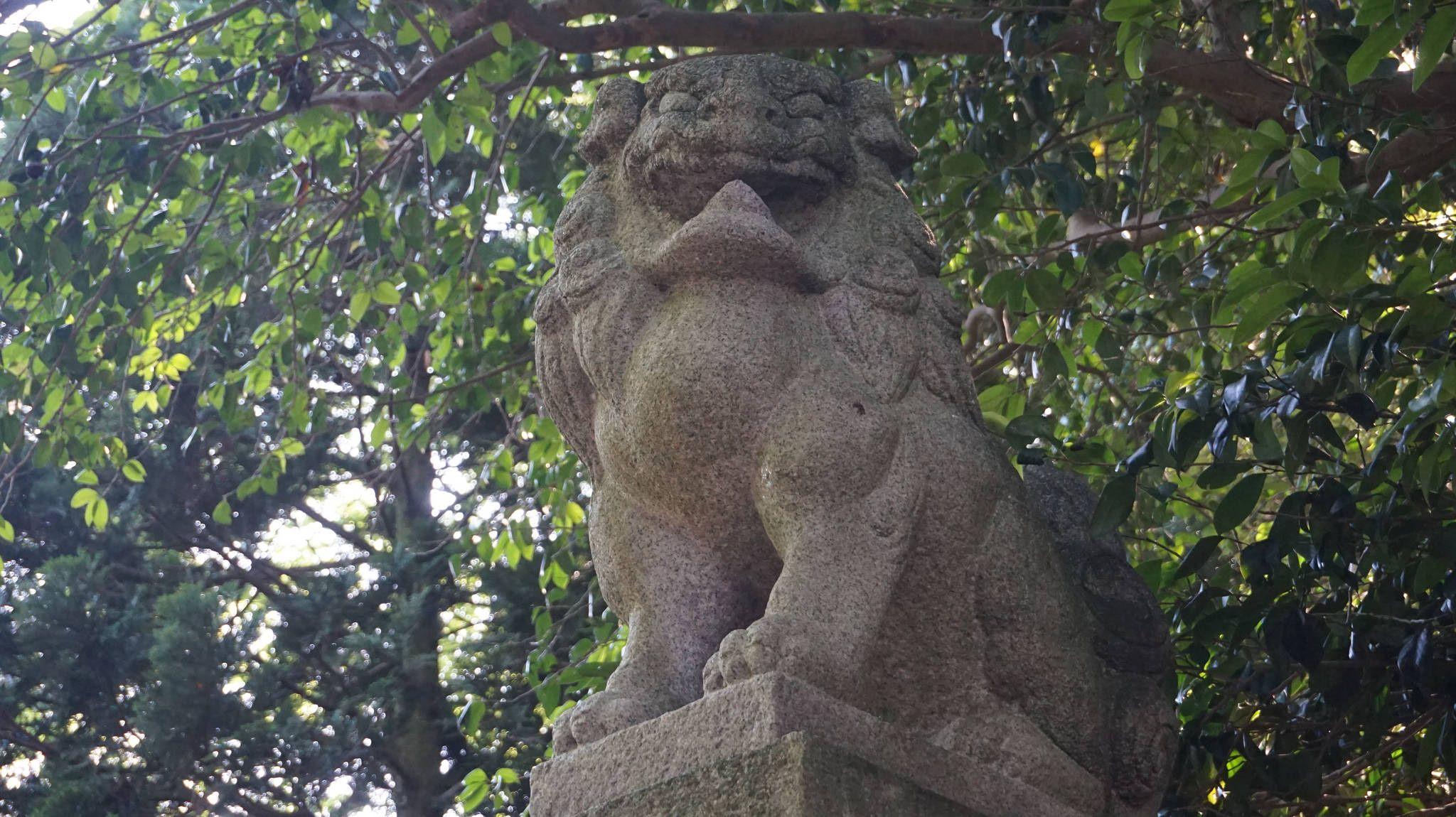 https://flic.kr/p/uqwFgb   榊葉乎布神社「阿」