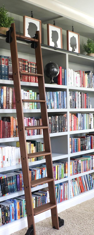 Unique Library Ladder Bookshelf