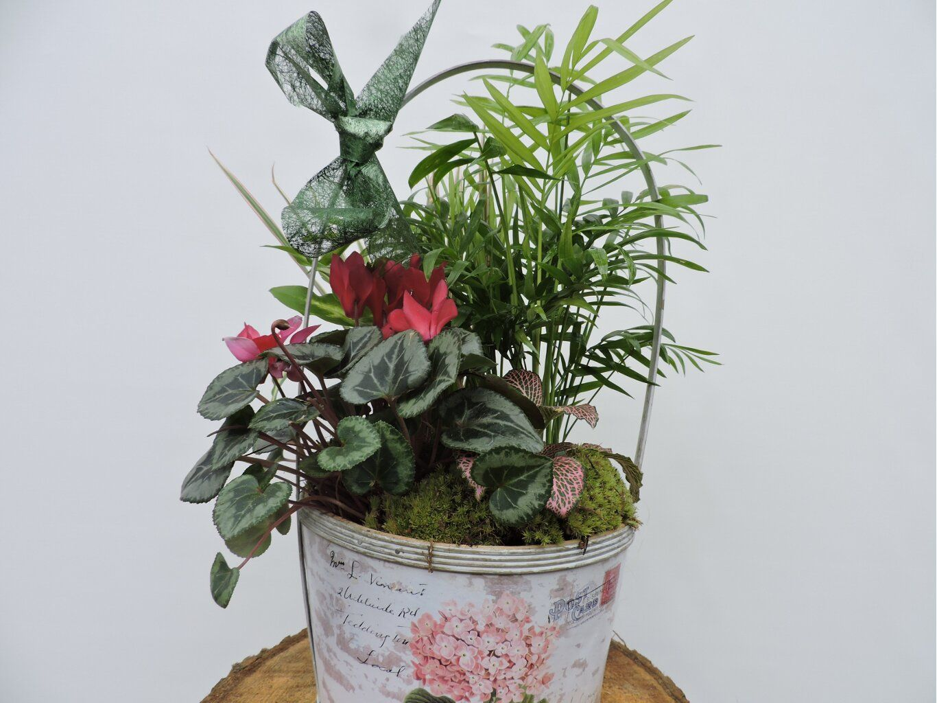 Centro de plantas de florister a joycar asociada a www - Pedestal para plantas ...