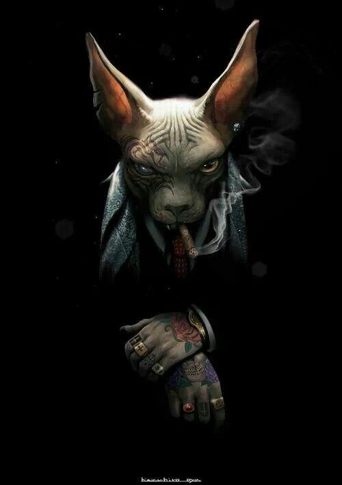 Cat Gangsta Cat Art Character Art Art