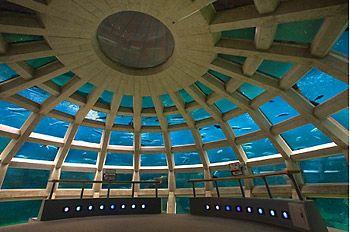 Seattle Aquarium underwater dome