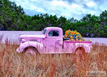 Old Pick Up Truck Painted Pink And The Bed Of The Truck Used For