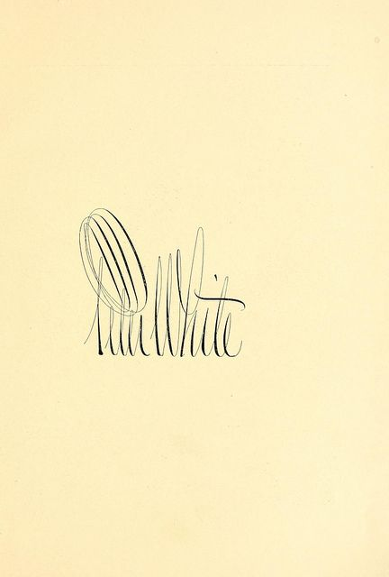 Peter White | Typography, Lettering design, Beautiful ...