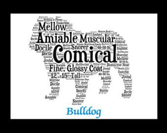 Whether you are looking for an American Bulldog artwork, an American Bulldog print or an American Bulldog gift for yourself or an American Bulldog