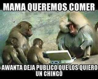 Funny Memes Zumba : Pinches viejas fodongas dicen voy a zumba a zumbarme