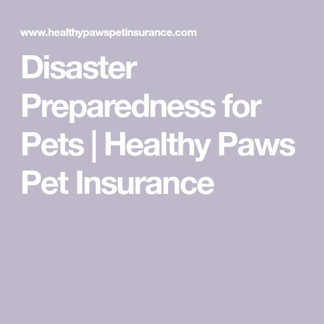 Disaster Preparedness For Pets Pet Insurance Reviews Pet Insurance Cost Pet Health Insurance