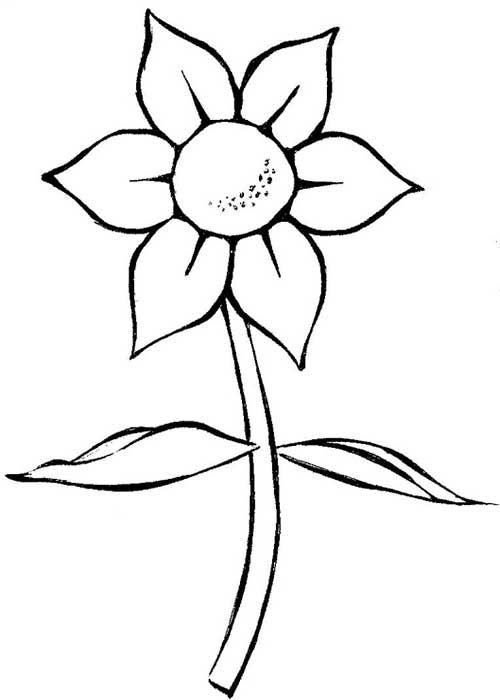 25 Desenhos De Flores Para Pintar Colorir Imprimir Ou Online