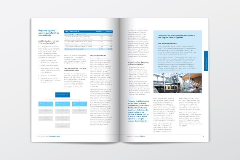 Transport Sector 2012 Annual Report Graphic Design - Editorial - microsoft word template report
