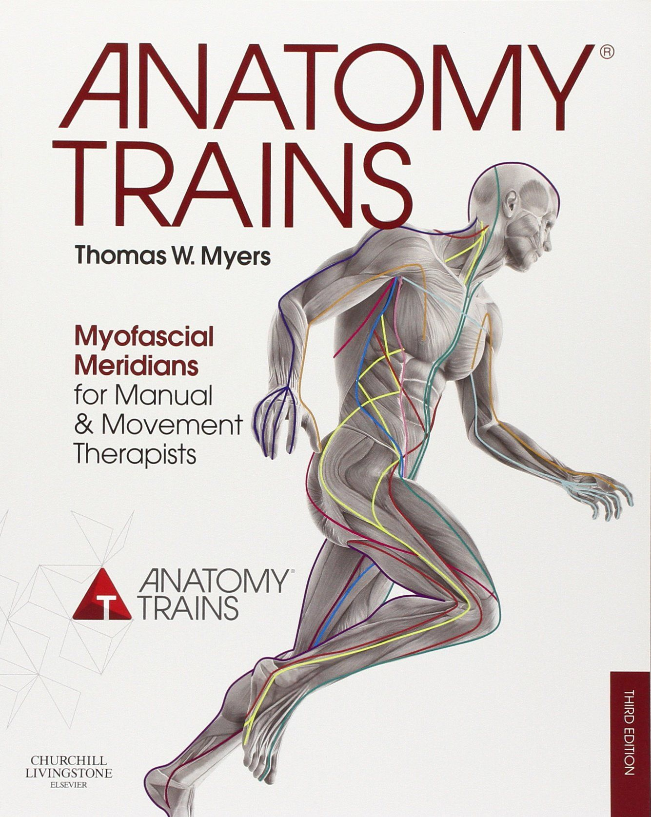 anatomy trains myofascial meridians for manual and movement anatomy trains myofascial meridians for manual and movement therapists by thomas w myers