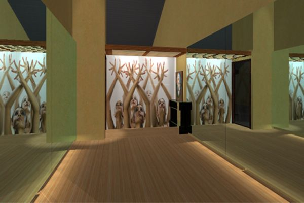 Dance Studio Interior Design Ideas Studio Interior Dance Studio Decor Dance Studio Design