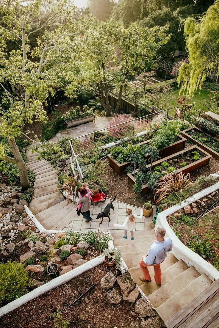 Planting A Small Veggie Garden   Sloped garden, Sloped ... on Patio Ideas For Sloping Gardens id=95104