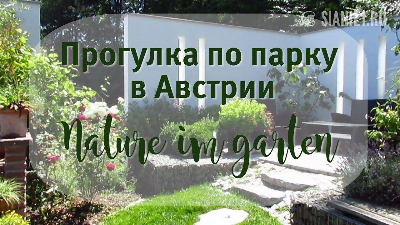 Natur Im Garten Youtube Dich Inspirieren Von Natur Im Garten Youtube Durchgehend Natur Im Garten Youtube Dich Inspirieren Plants