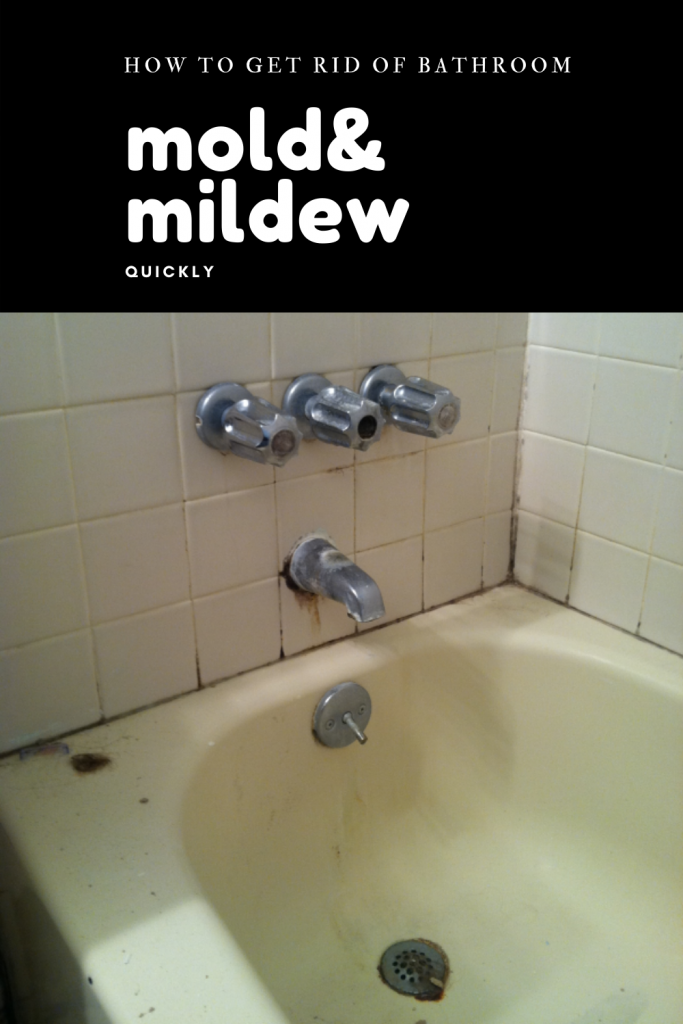 How To Get Rid Of Mildew Smell In Bathroom Sink