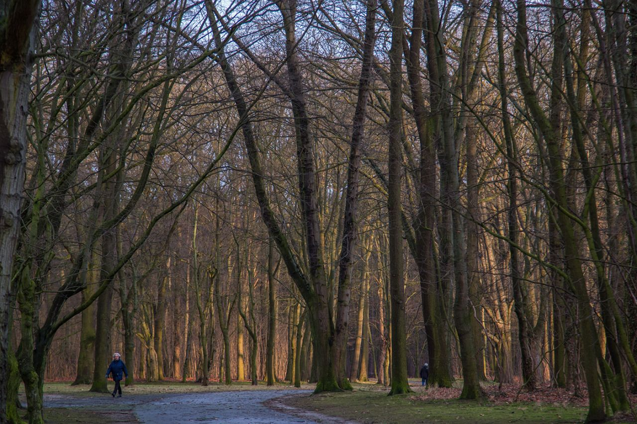 Braunschweigprinzenpark