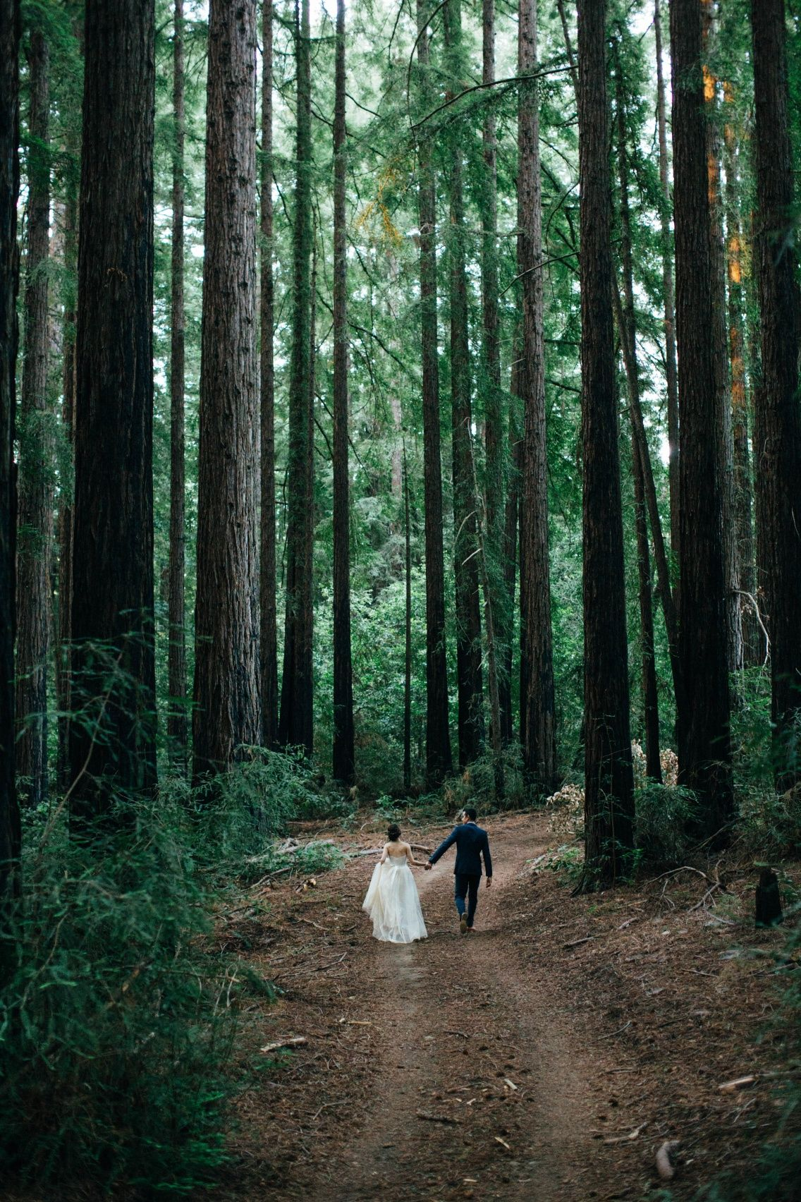 #romantic #wedding Now Available — The Alternative Process Collection