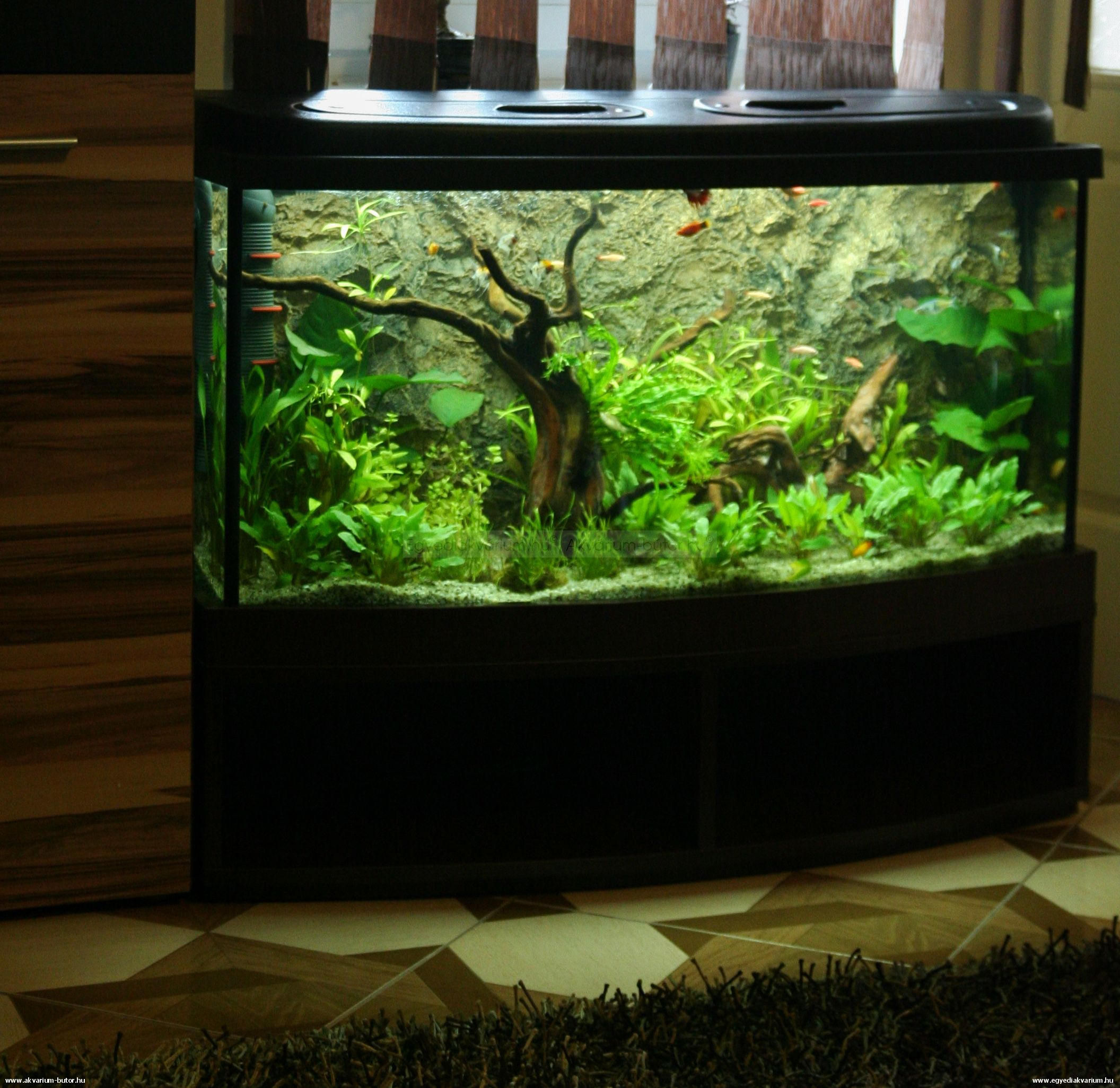200 liter community tank 200 literes t rsas akv rium. Black Bedroom Furniture Sets. Home Design Ideas
