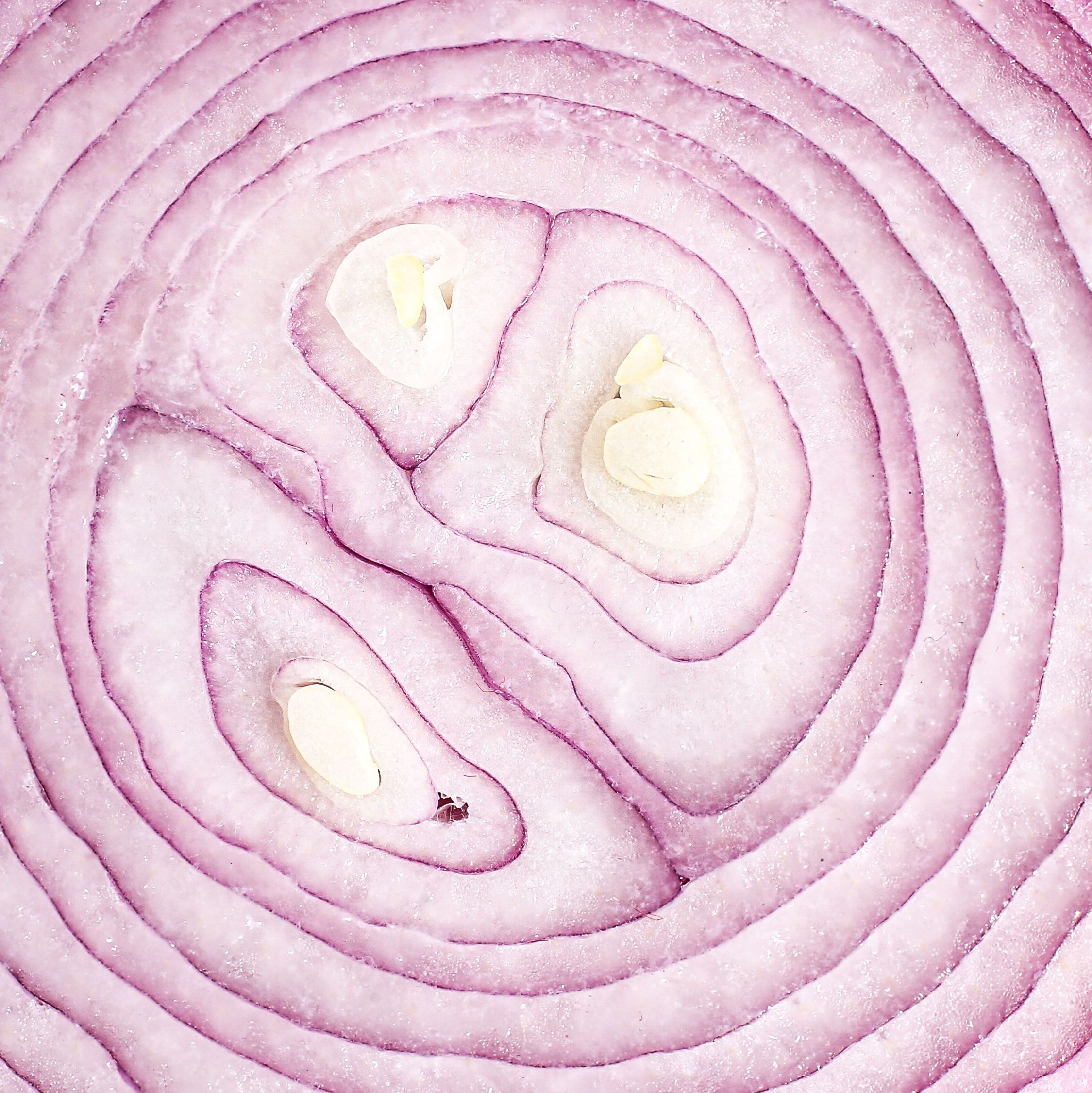 Help I Ve Got Too Many Onions In 2020 Onion Delicious Vegetables Im Not Perfect