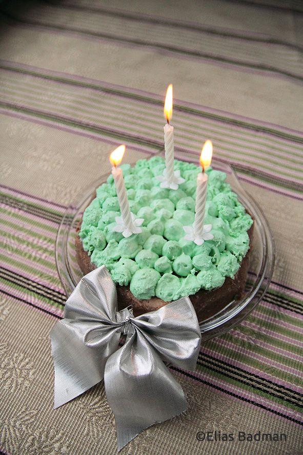 Gateau DAnniversaire Pour Chat Verifie Par Un Veto Birthday Cake For Your Cat