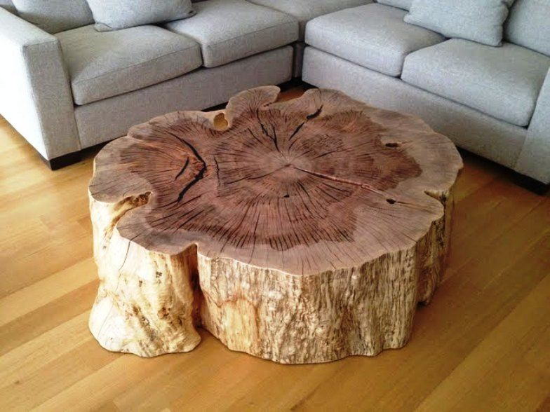 Tree stump coffee table natural unique design tree stump for Hollow tree trunk ideas