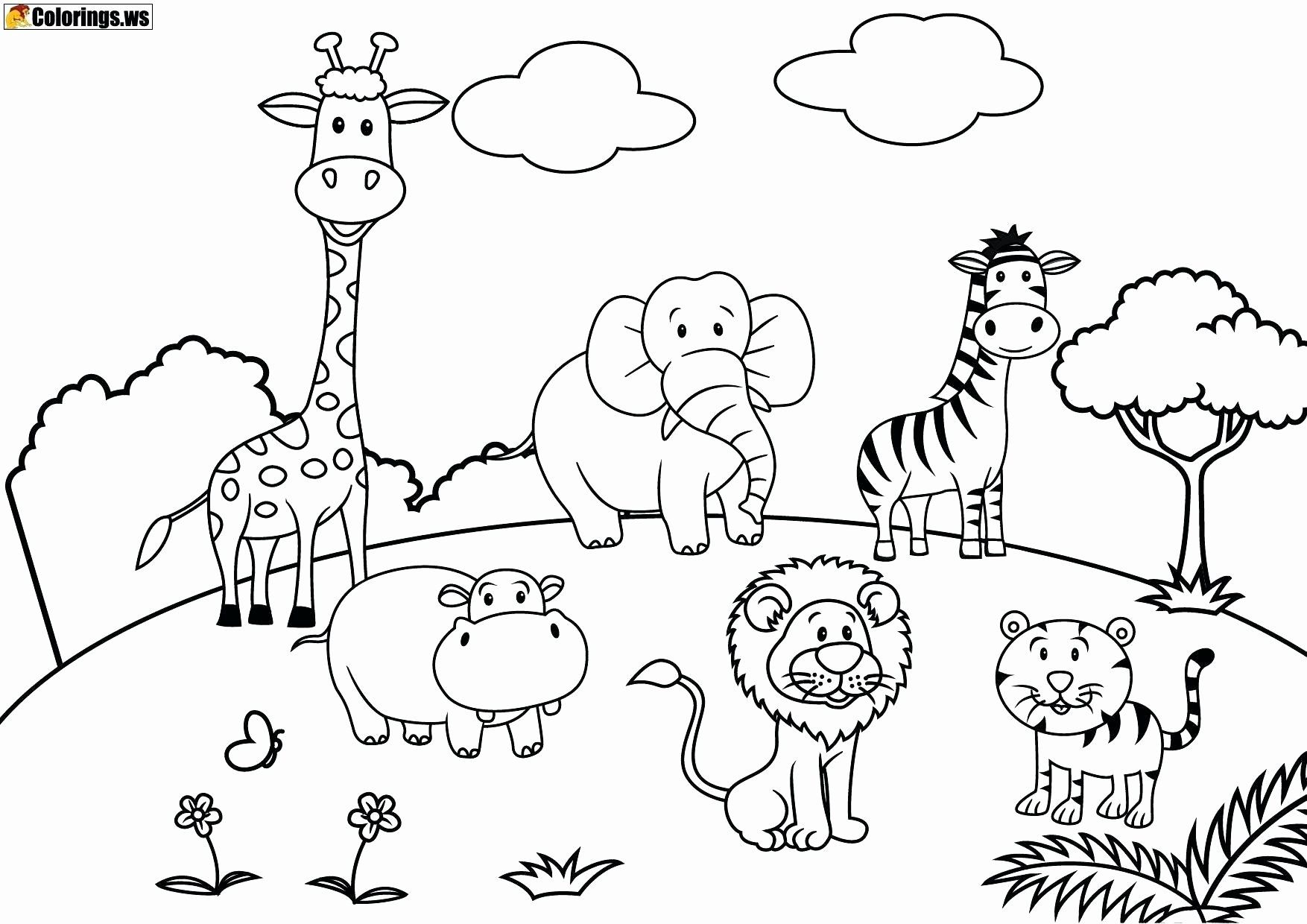 Pin By Maril Bovy On Classrooms Zoo Animal Coloring Pages Zoo Coloring Pages Animal Coloring Books